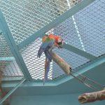 Попугай Ара в московском зоопарке
